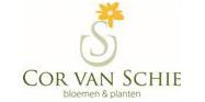Cor van Schie